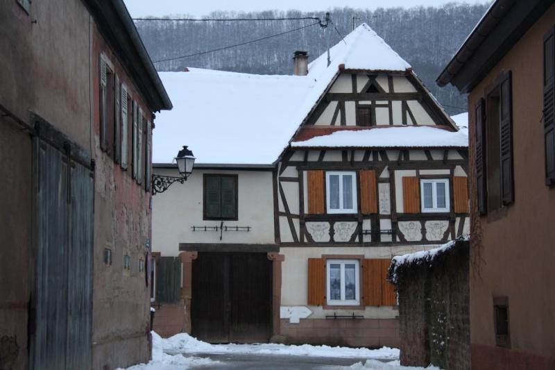 Vive la neige à Wangen ! - Page 2 Img_8513