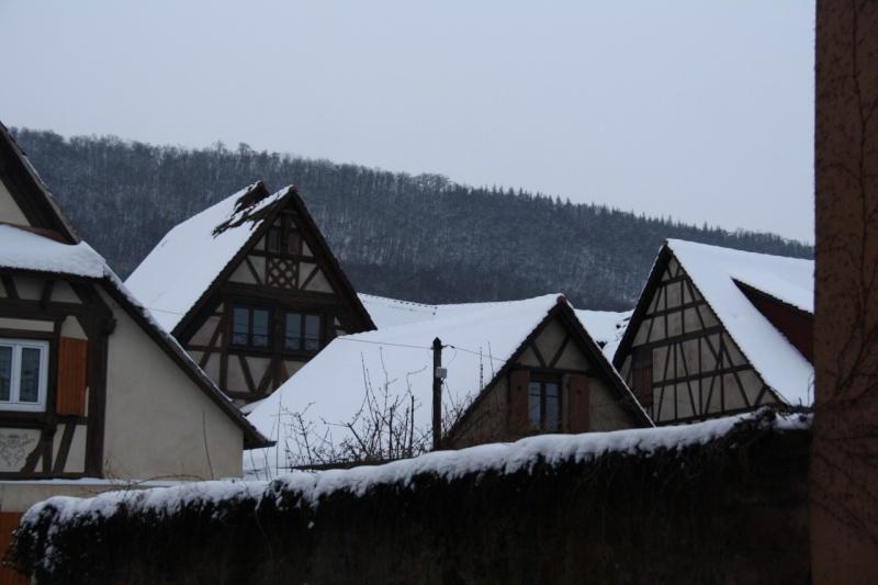 Vive la neige à Wangen ! - Page 2 Img_8514