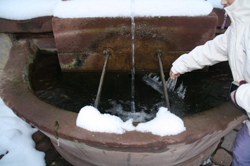 Vive la neige à Wangen ! - Page 2 Img_8516