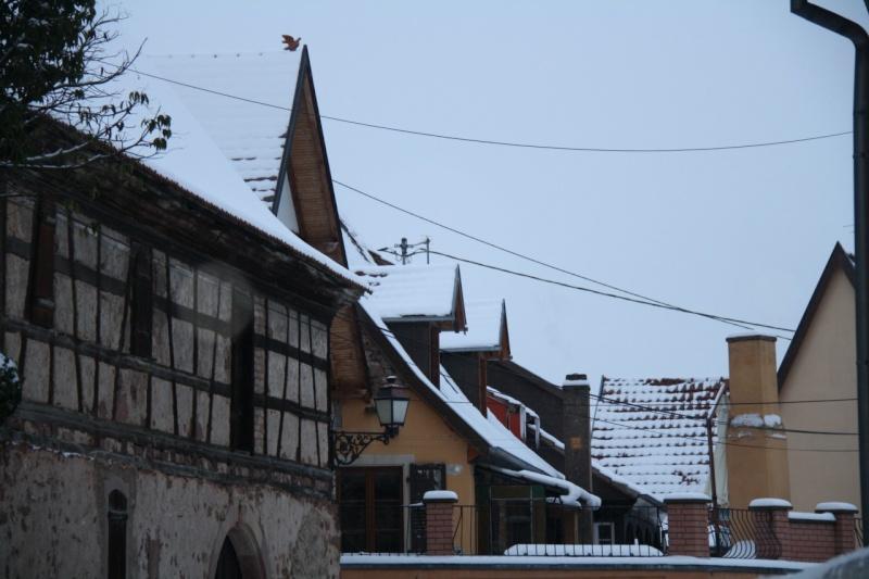 Vive la neige à Wangen ! - Page 2 Img_8518