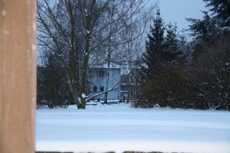 Vive la neige à Wangen ! - Page 2 Img_8523
