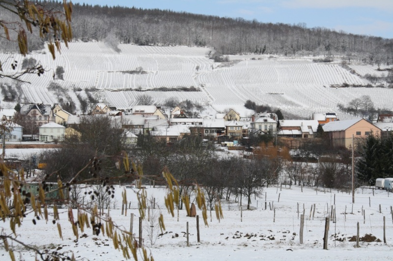 Vive la neige à Wangen ! - Page 2 Img_8610