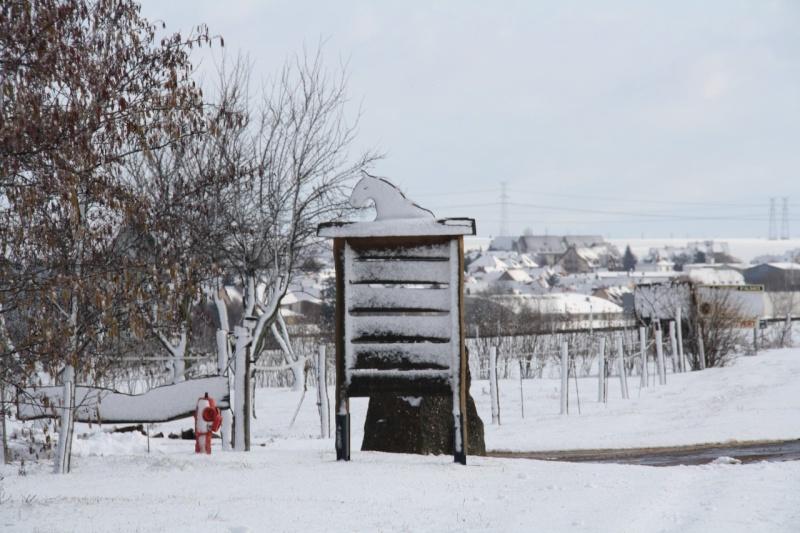 Vive la neige à Wangen ! - Page 2 Img_8611