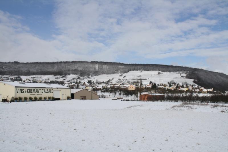 Vive la neige à Wangen ! - Page 2 Img_8613