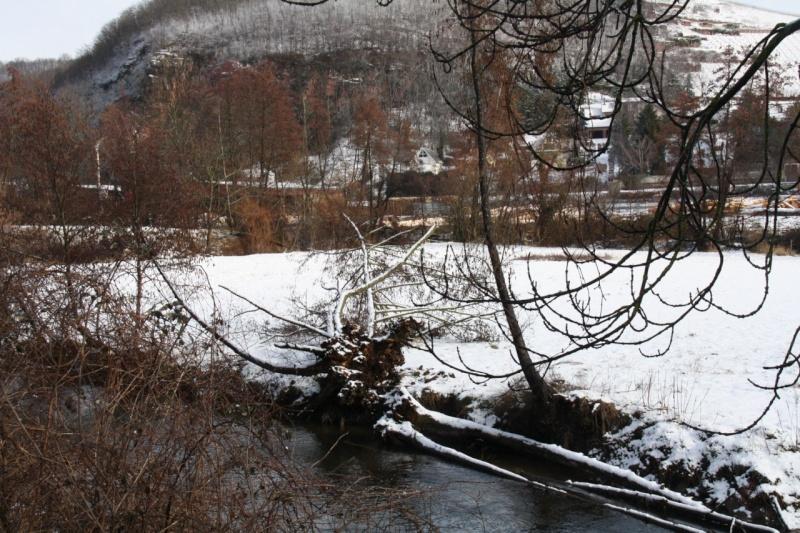 Vive la neige à Wangen ! - Page 2 Img_8614