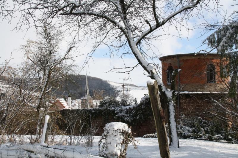 Vive la neige à Wangen ! - Page 2 Img_8617