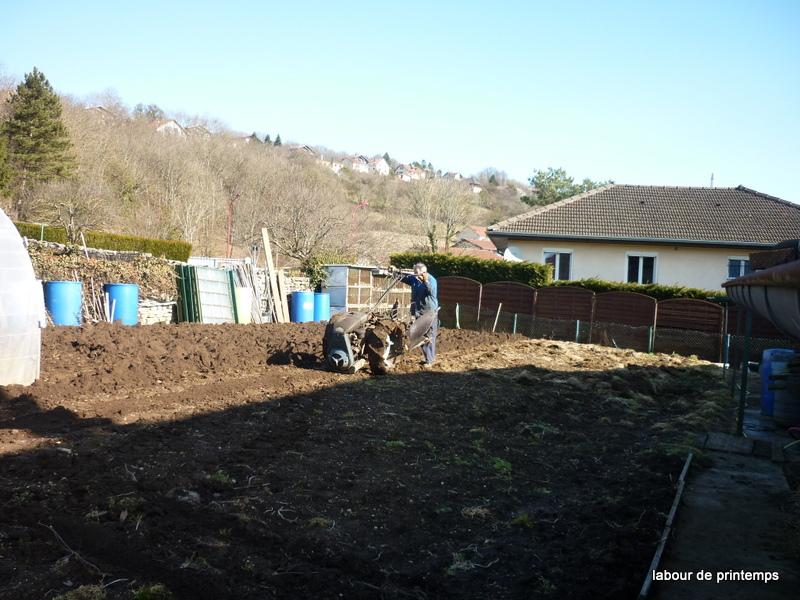 Ca s'arrange pas dans le jardin... - Page 2 P1050714