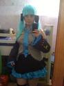 Miku Hatsune Img_0011
