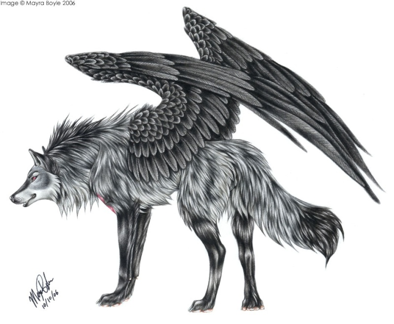 Kityo's bio Zeus_b10