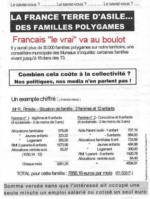 combien coûte une famille Polygame ? A_fair10