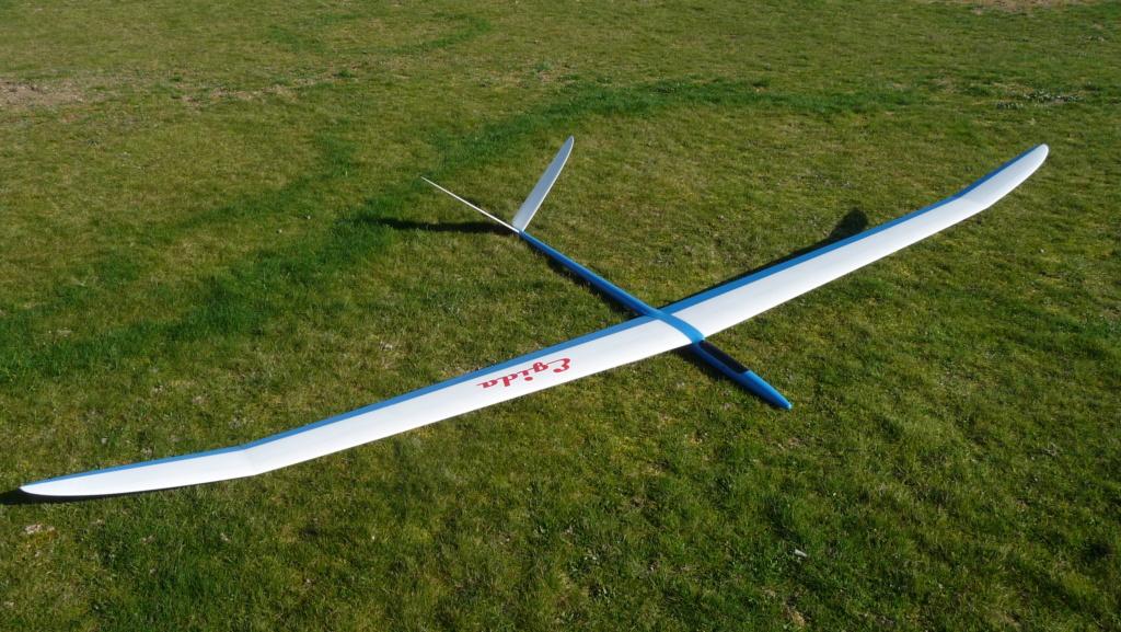 planeur EGIDA  Jaro Muller  ( VENDU ) ) P1040211
