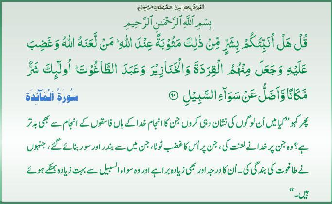 Daily Qur'an Downlo10
