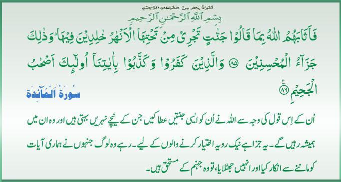Daily Qur'an Quran_14