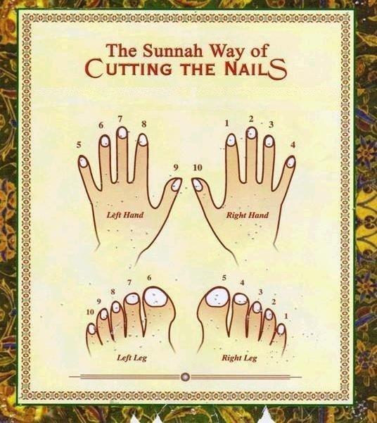 The Sunnah Way of Cutting the Nails Sunnah10