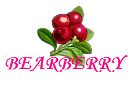 Bearberry Products Bearbe14