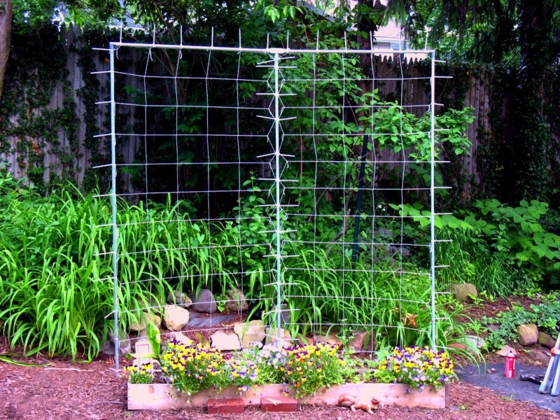 The Story of the Great Trellis-raising Trelli12