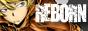 ▬ Logos & Formulaire Bouton11