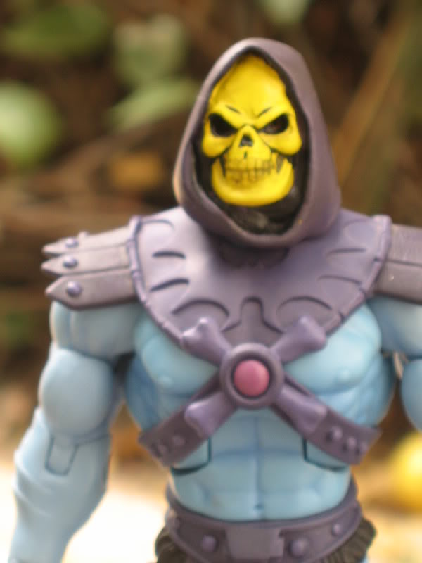 Filmation Skeletor Img_7510