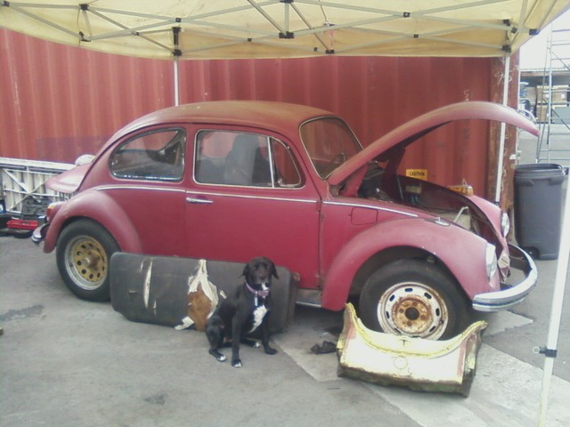 1968 Build. Cali bug project.. Sadiek11