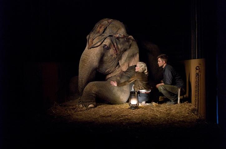 [Robert Pattinson] Water for Elephants Water-14