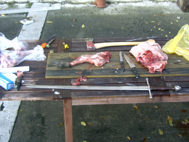 Une épée c'est fait pour tuer Pdr_0215