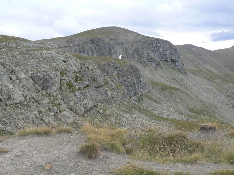 bunker dans la région alpes de haute provence P1030713