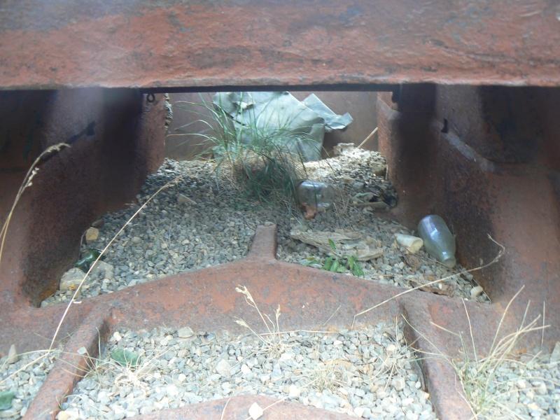 bunker dans la région alpes de haute provence P1030719