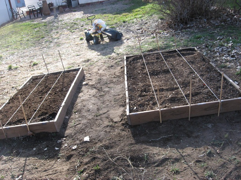 Two beds built and filled Img_0015