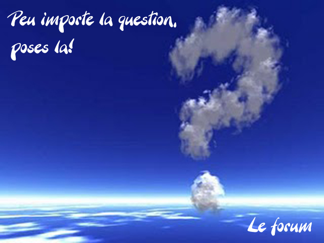Peu importe la question poses-la !
