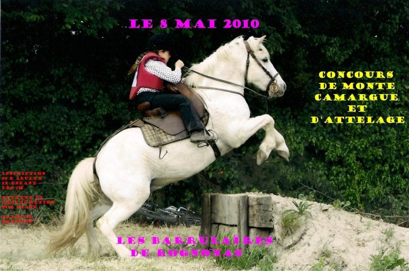 concours monte camargue et attelage le  mai rognonas Affich14