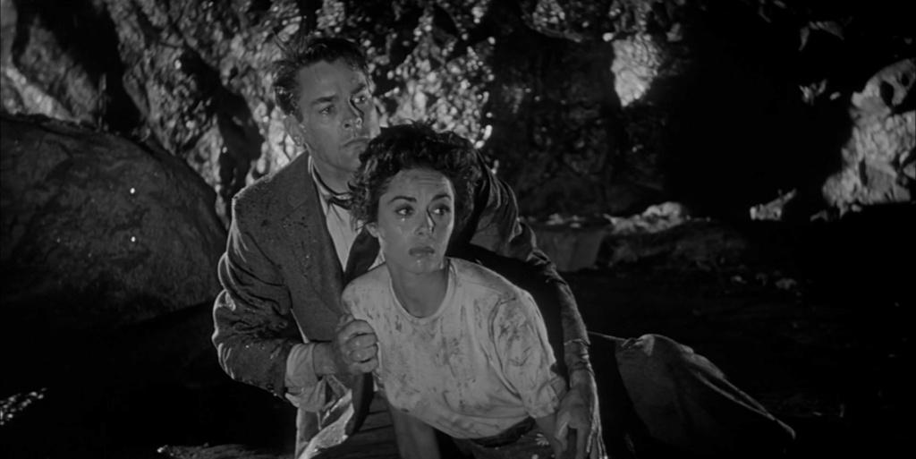 L'Invasion des profanateurs de sépultures. Invasion of the Body Snatchers. 1956. Don Siegel. Vlcs1147