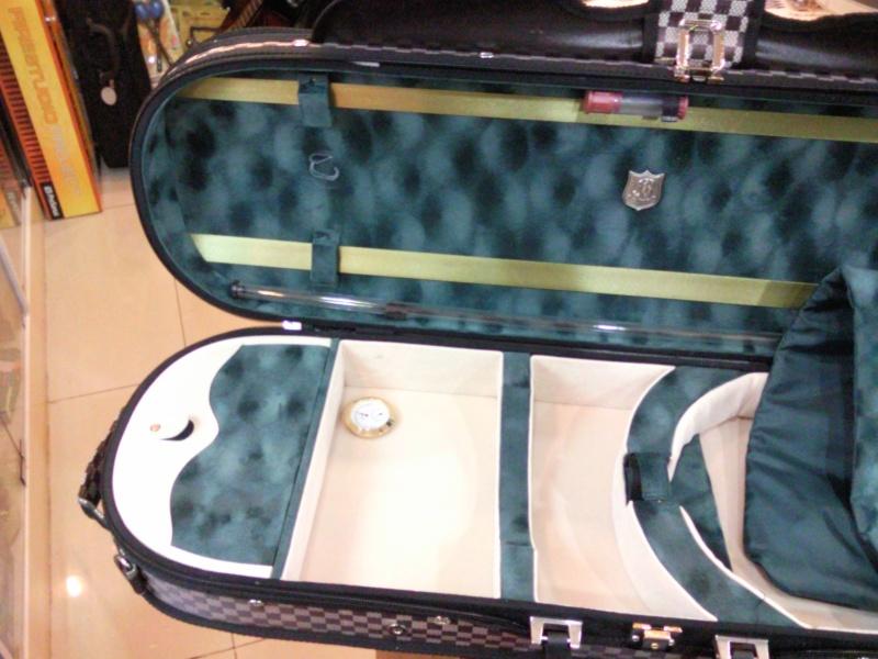 Violin Cases Snc00011