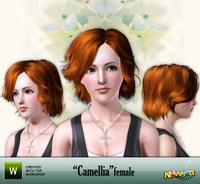 Newsea Camellia 14365710