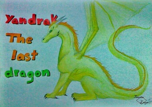 Dragon 10062711