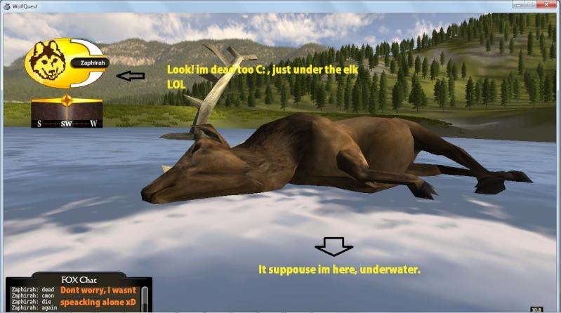 Wolf Quest / Game! Dghkl10