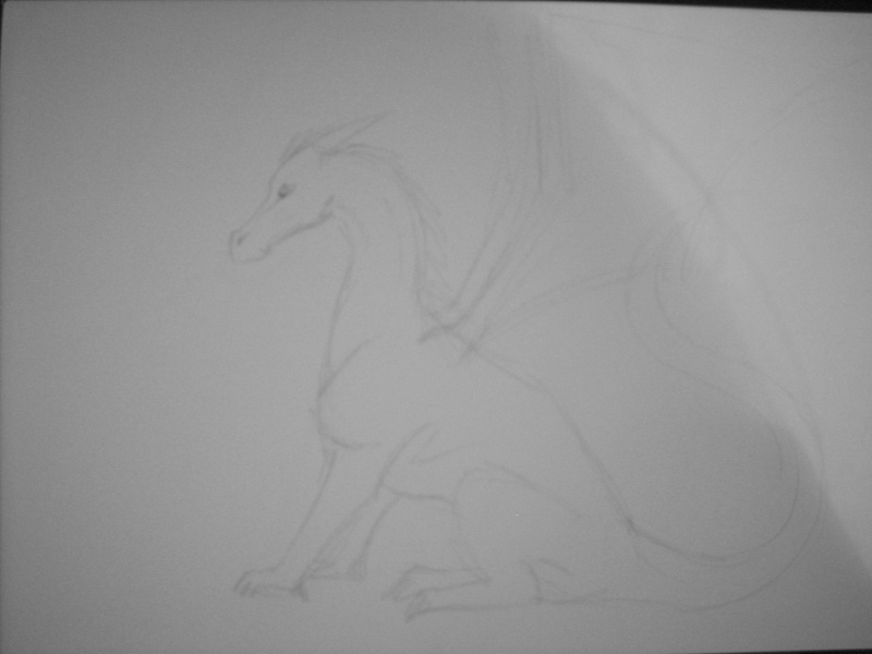 Dragon Dscn0720