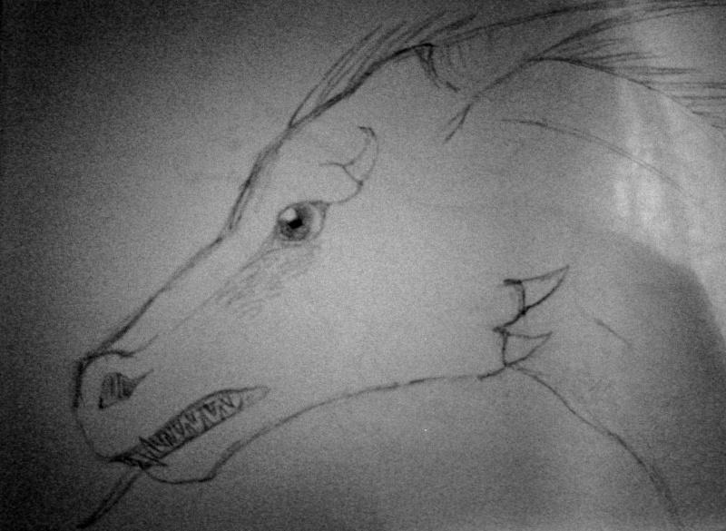 Dragon Face Dscn0725