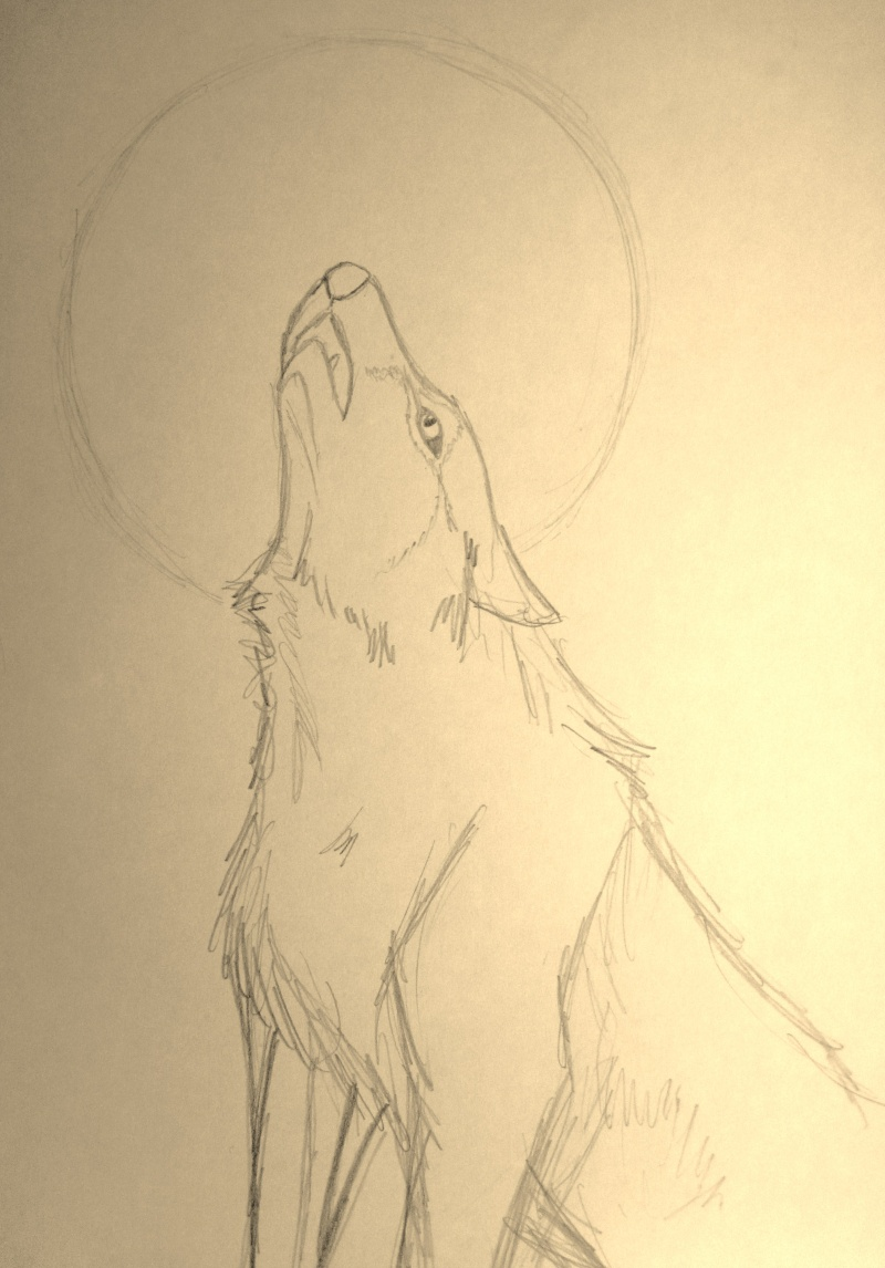 Last Howl Img_0410