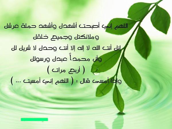 """Le coin de """"Dhikrou Allah"""" - Page 3 72581f10"""