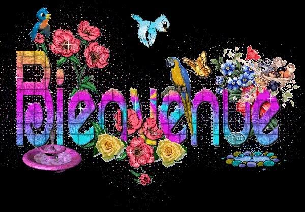 Bonjour à vous tous Bienve19