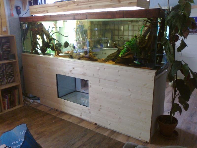 kej aquariumsssssssss!! 02042010