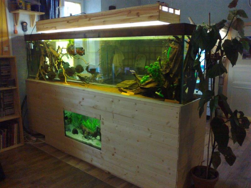 kej aquariumsssssssss!! 03042014