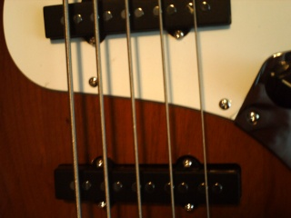 New Bass Pict0517