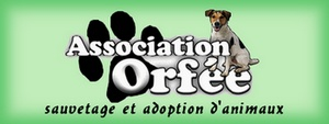 Association Orfée Bannie10