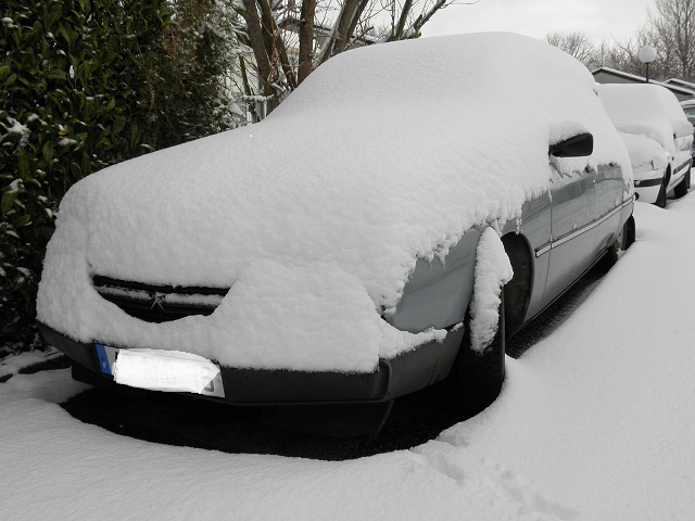 GSA dans la neige... Gsa11
