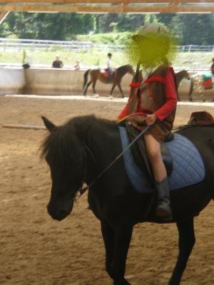 Danseur ONC poney - placé hors association Danseu12