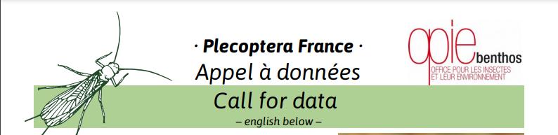 Appel à données : Atlas des Plécoptères de France 2021-012