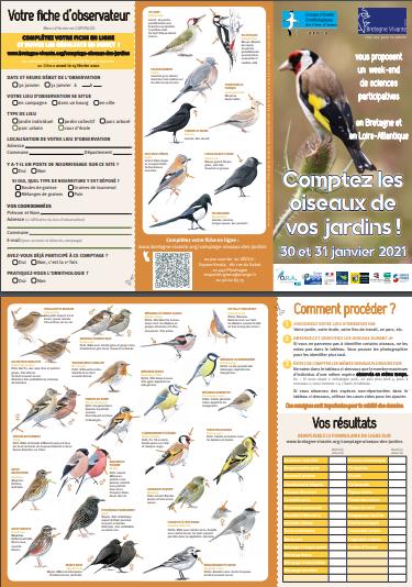 Bientôt le comptage des oiseaux de jardin (WE 30 et 31 janvier) ! 202110