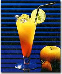 Wunderlich Ténéré Cockta10