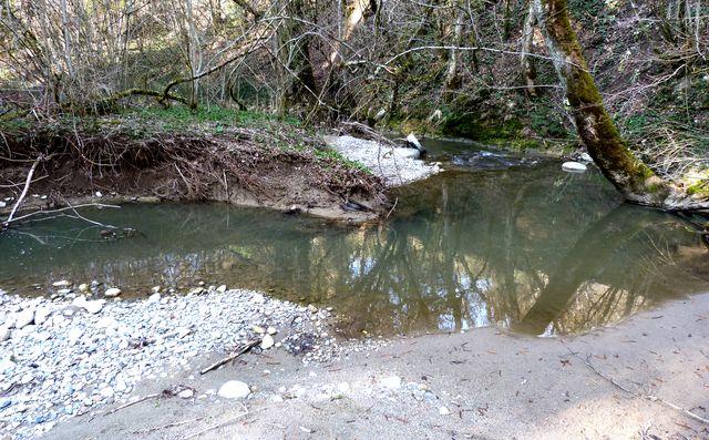 11 - concours les ruisseaux... photos reçues ! Ret8110